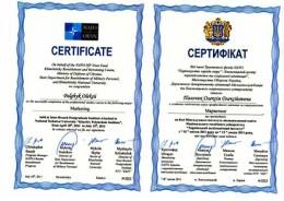 certificate_palchik